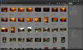 photoshop thumbnail how to see file names in adobe photoshop elements organizer