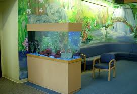 aquarium for office. olympia pediatricianu0027s office aquarium for e