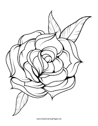 Unfold Coloring Page