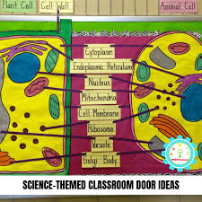 Classroom Decoration Charts For High School 21 Clever Science Classroom Decorating Ideas For Your