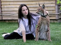 lynx size healthiana lynx cat