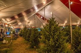 Hart-T-Tree Farms Christmas Tree Lot Davie Florida location