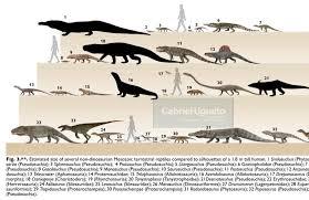 Dinosaur Sizes Comparison Chart Size Comparisons Of Various Non Dinosaur Reptiles Of The