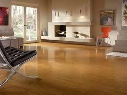 Astonishing Ideas Flooring Options For Living Room Creative