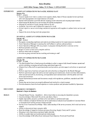 Operations Resume Examples Sample Job Description Forperations Manager Delivery Resume