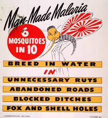 essay on malaria the posters literature review on malaria  the posters poster shown in the film medicine in action
