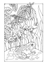 Small Picture 41 best Water Life Coloring Pages images on Pinterest Coloring
