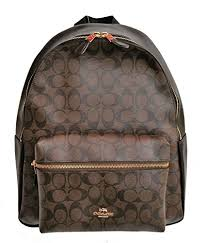 Amazon.com  Coach X Disney Minnie Mouse Charlie Backpack Signature Canvas  Leather F29355 Brown Black  Shoes