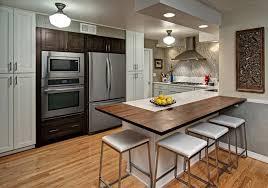 Kitchen Remodel Minneapolis Model