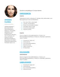 Modelo De Curriculum Vitae En Word