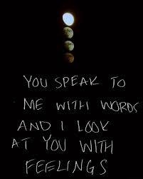 Expressing Love Quotes Funny Quotes Expressing Love The Hun for 79