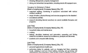 example resume examples of resumes objectives profile and skills sample resume objectives profile example on resume