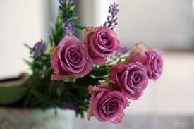 share this source flowers good morning pink roses flower free wallpaper