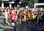 Официальный сайт пдд марафон