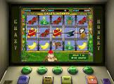 Crazy Monkey – онлайн игровые автоматы