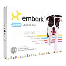 Dog Dna Chart Best Dog Dna Tests Of 2019 Reviews Of Wisdom Panel Embark