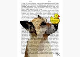 german shepherd dog and duck print by fab funky