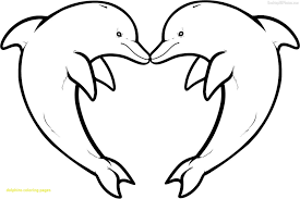 Emerging Dolphin Coloring Picture Book For Adults Vector Stock
