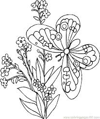flower and butterfly coloring pages. Unique And Flowers Butterflies Coloring Pages Printable Butterfly Page  Inspirational And Luxury Cool And Flower Butterfly Coloring Pages R