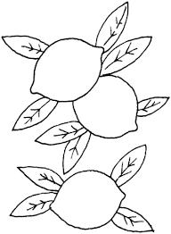 Disegno Di Limoni Con Foglie Da Colorare Disegni Da Colorare E