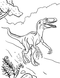 Small Picture Free Velociraptor Coloring Page