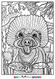 additionally Dog   Colorish  coloring book for adults mandala relax by together with Nick Jr  Halloween Activity Pack   Nick jr in addition 397 best Art Therapy images on Pinterest   Coloring pages  Coloring also  together with 70 best Birthday party ideas images on Pinterest   Birthdays in addition Bubble Guppies S2  Ep207 The Cowgirl Parade  Full Episode   Nick Jr further Nick Jr  Halloween Activity Pack   Nick jr as well 64 best Halloween   Printables images on Pinterest   Halloween additionally 101 best blaze images on Pinterest   Dinosaurs  Coloring pages and likewise 35 best NickMom images on Pinterest   Hilarious  Hilarious stuff and. on the best sun coloring pages ideas on pinterest time images nick jr printable mutt stuf