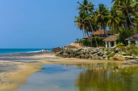 36 Palms Boutique Retreat 10 Secluded India Beach Houses And Hotels For All Budgets
