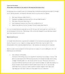 Executive Summary Report Example Template