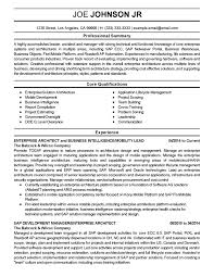Enterprise Architecture Resumes Yun56 Co System Architect Cv Sample