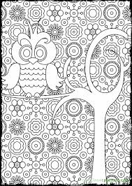 Small Picture Owl Coloring Pages For Adults Only Coloring Pages 16098