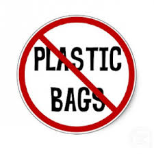 essay on ban on plastic daily home study ban on plastic bag