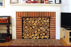 picture of fireplace insert