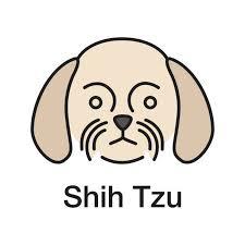 Image result for shih tzu clipart