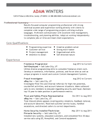 Resume Summary In Resume Examples