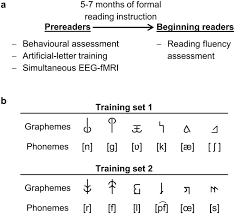simulating reading acquisition the