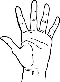 Hasil gambar untuk gambar lima jari