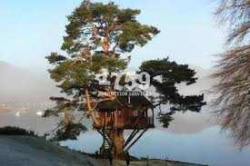 ExPresso Tree House On Loch Goil In ScotlandTreehouse Scotland