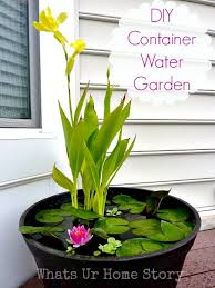 Recycled Container Gardening  Google Search  Urban Garden Ideas Container Garden Ideas Pinterest