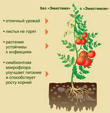 Минеральные <b>удобрения</b> и регуляторы роста растений Zeba ...