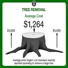 real cost of tree removal in toronto ontario tree services gta company cutting prices l30