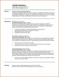 Bank Branch Manager Business Plan Sample For Template Best Loan
