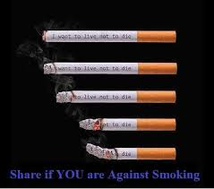 Smoking Quotes Smoking Quote Quote Number 100 Picture Quotes 13