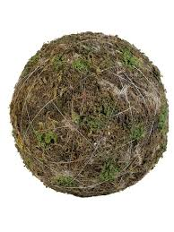 Decorative Moss Balls Moss Balls 40