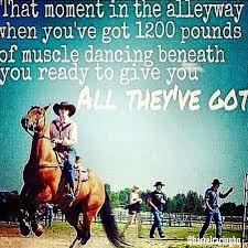 Barrel Racing Quotes Awesome Barrel Racing Quotes Best Quotes Ever