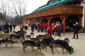 Slikovni rezultat za jelenov greben