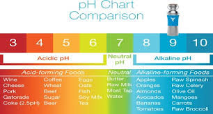 Alkaline Ph Level Chart Alkaline Water Kills Cancer How To Make It Awaken