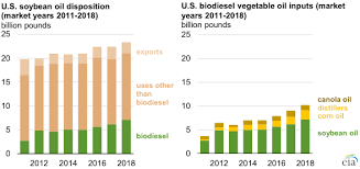 Soybean Oil Comprises A Larger Share Of Domestic Biodiesel
