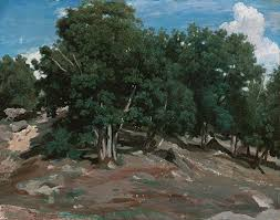 the barbizon school french painters of nature essay heilbrunn  fontainebleau oak trees at bas breau