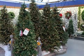 Creative Decoration Garden Ridge Christmas Trees 2014 Where To Buy The Best  Tree How Pick