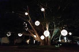 outdoor tree lighting ideas. Outdoor Ideas HoliSpheres Tree Lighting
